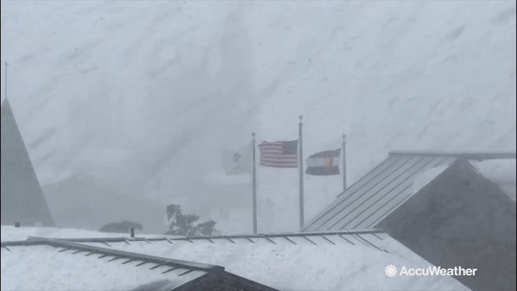 Intense snow squall brings near-whiteout conditions