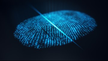 Biometric scans for faster car rentals: Hertz and Clear team up