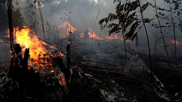 Some Brazilians are torn over Amazon wildfires