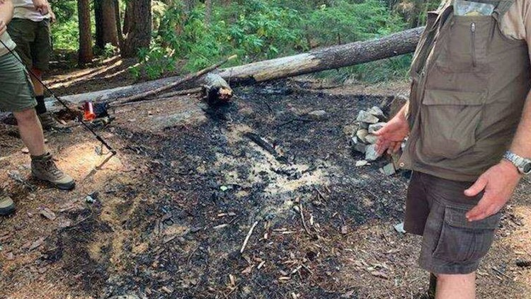 Boy Scouts troop puts out spreading fire in Willamette National Forest