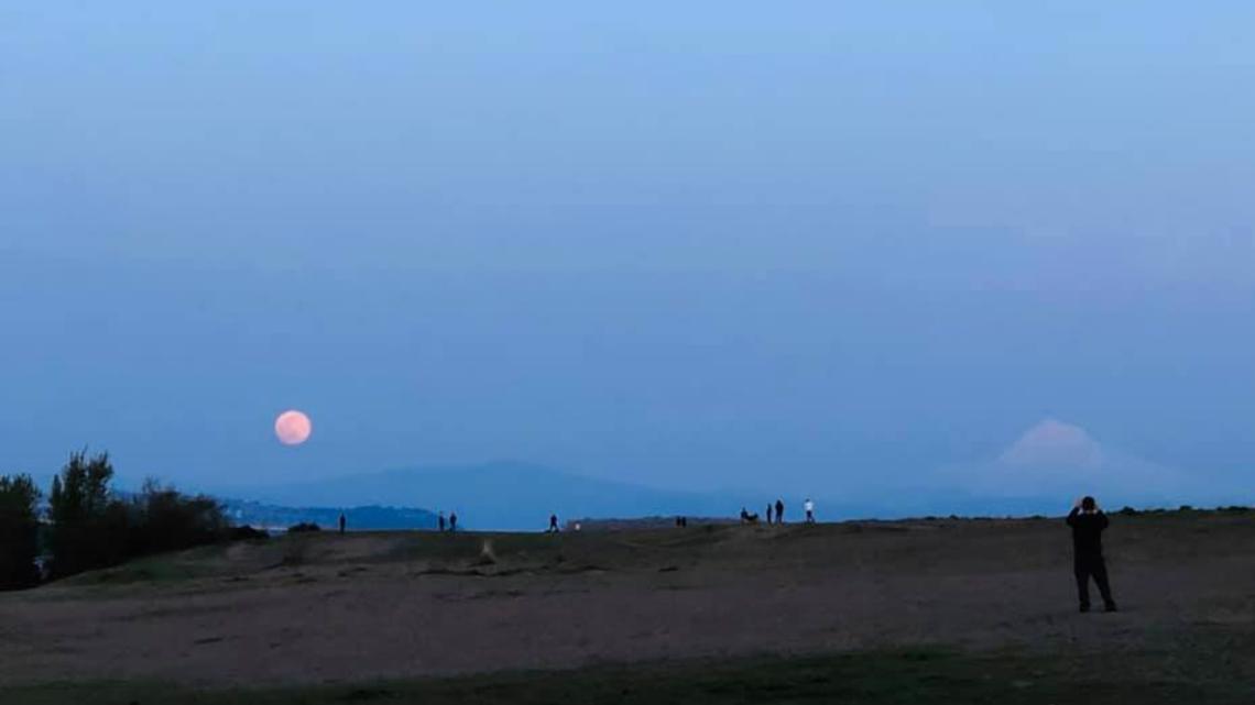 Photos: 'Pink' Supermoon rises over Oregon