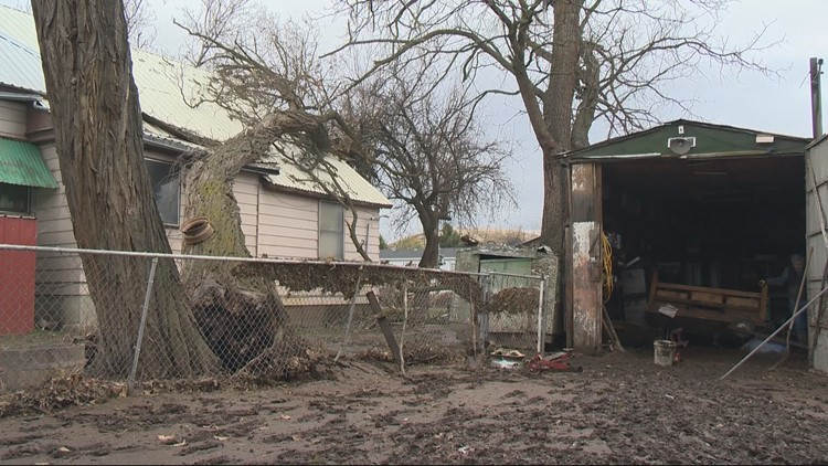 Tree falls on house after flooding in Pendleton