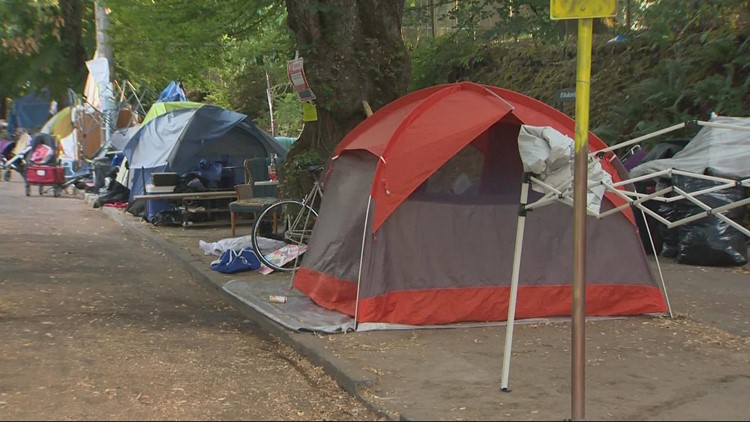 City moved in to clear homeless camp at Laurelhurst Park