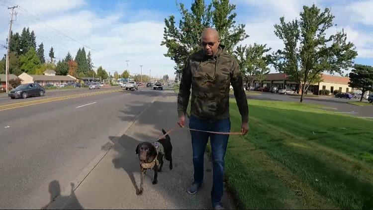Nonprofit Northwest Battle Buddies provides service dogs for veterans