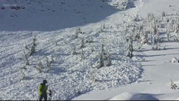 Large avalanche at popular back country Tumalo Butte