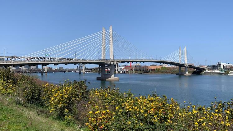 Live music and movies all summer on Portland's south waterfront