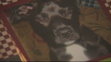 'Those last few days were horrible': Gresham family shares warning after dog dies from heart disease