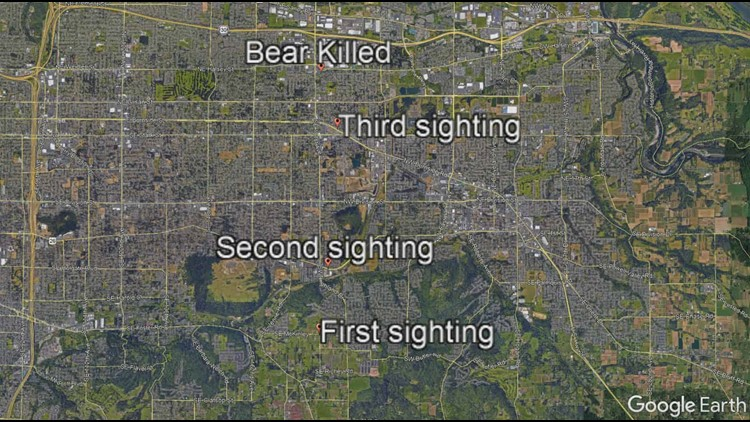 Police shot and killed a black bear about 2 a.m. Friday that was roaming through Gresham neighborhoods and retail districts with heavy foot traffic.