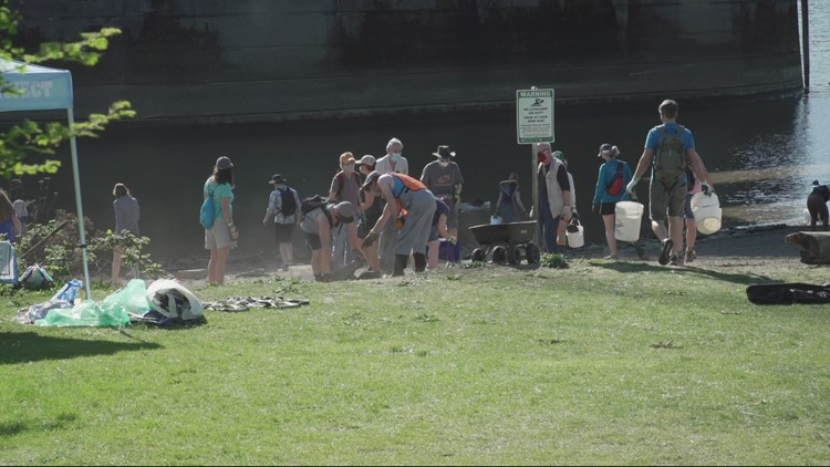 Cathedral Park beach gets a thorough cleanup at low tide