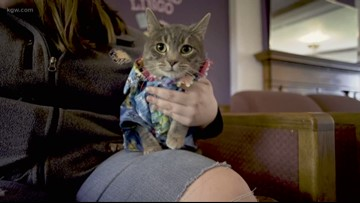 Linfield allows pets to live with students on campus