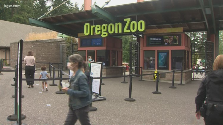 Oregon Zoo offering free passes to people who get vaccinated this weekend