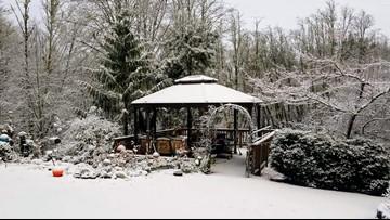 Photos and videos: Snow in Oregon and Washington