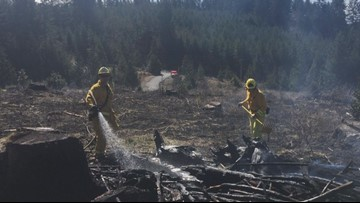 Cowlitz County fire grows to 40 acres, 90 homes threatened