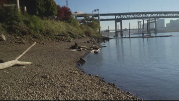 Portland group plans beach on Willamette named for Audrey McCall