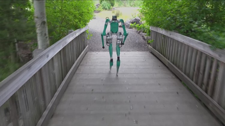 Oregon-made walking, humanoid robot testing package delivery from curb to your doorstep