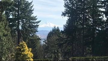 Portland spring bloom behind schedule, still plenty of scents and scenery