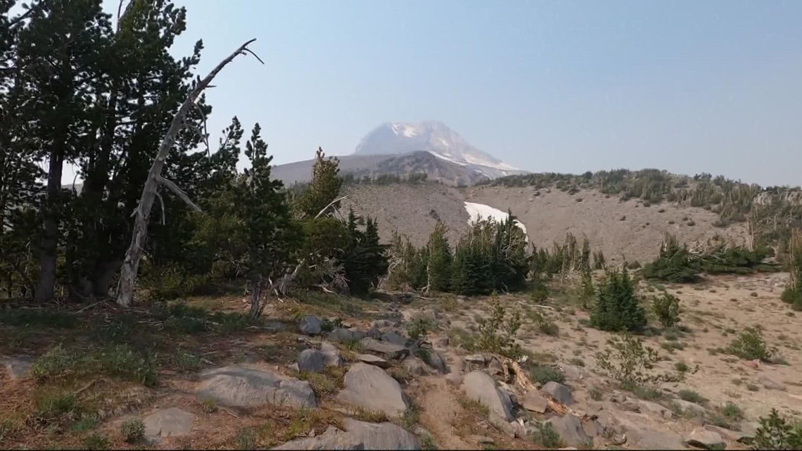 Mount Hood Meadows in Summer   Let's Get Out There