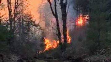 Evacuation levels lifted for Santiam Park Fire; 80 percent lined