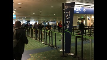 TSA temporarily allowing expired driver's licenses as ID