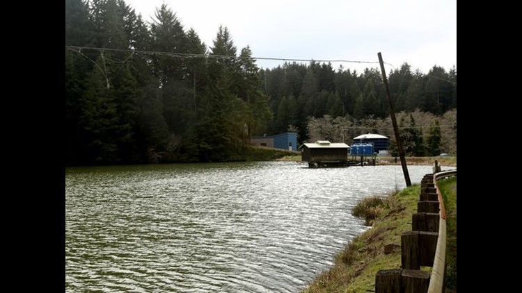 Many of Oregon's dams in dangerous condition