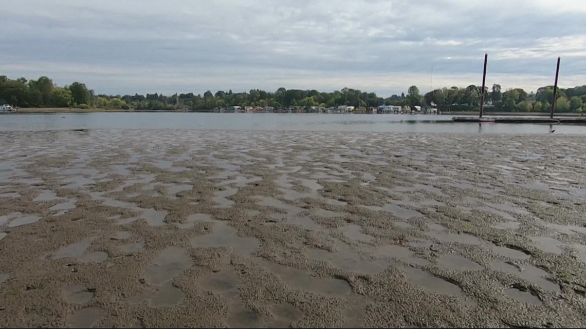 Drought leads to unusually low water levels on the Willamette, Columbia rivers