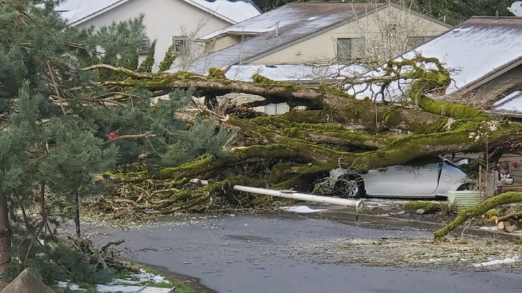 Internet restored in Lake Oswego neighborhood one month after February storm