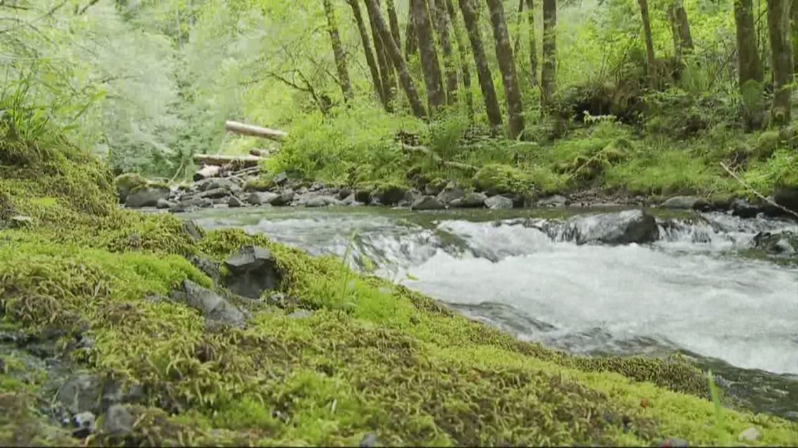 Grant's Getaways: A Sweet Oregon Spring