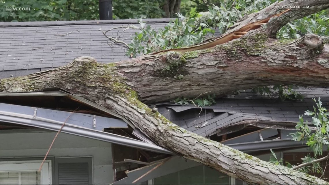Winter storm fallout: What insurance will cover