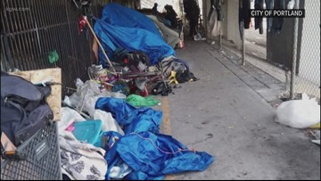 Cost of cleaning up illegal campsites