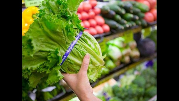 Coli outbreak linked to chopped romaine lettuce