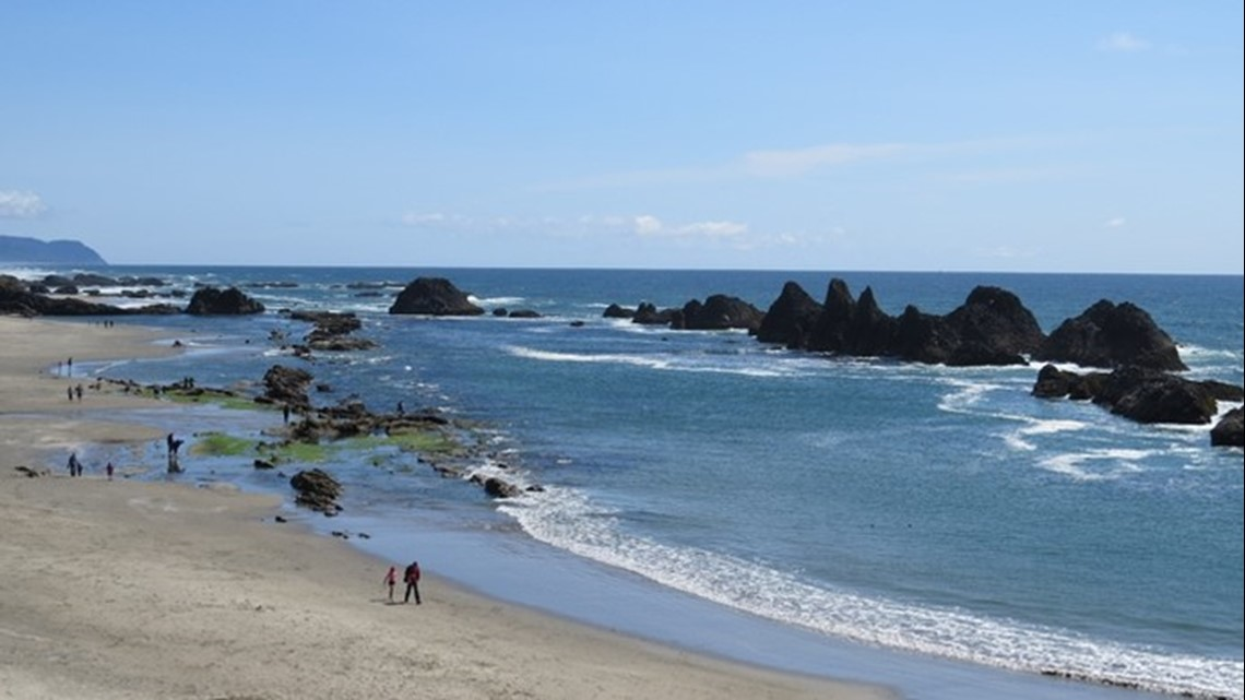 Health advisory issued at Seal Rock State Park Beach for high levels of fecal bacteria