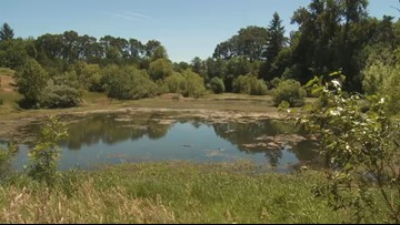 Grant's Getaways: The Little Luckiamute River