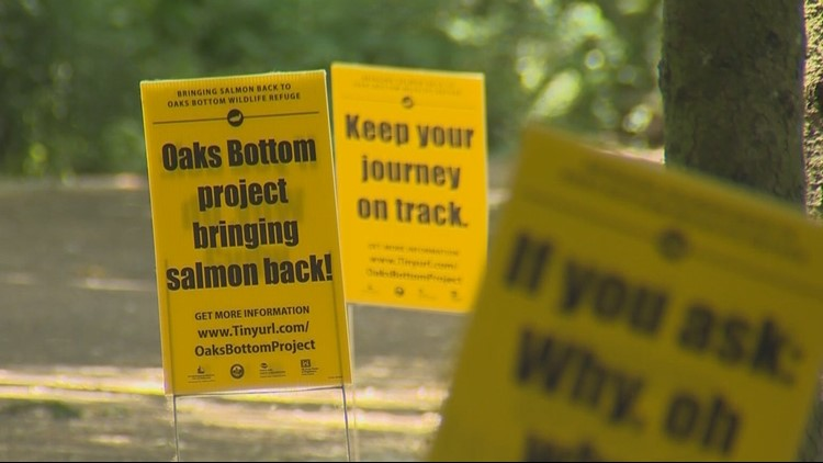 Signs for Springwate Trail closure for salmon refuge projectSpringwater_1530930006595.jpg