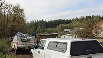34 horses seized, owners face animal neglect charges