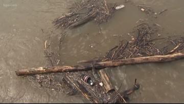 Flood warning for Willamette River affecting Benton, Linn counties