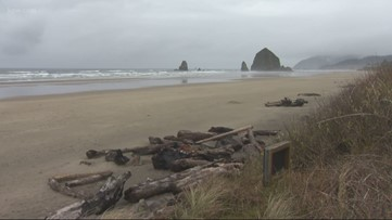Beaches, coastal cities empty as Oregon's stay-home order takes hold