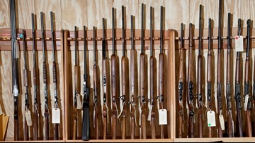 Gun shops expect rush after WA voters pass strict new law