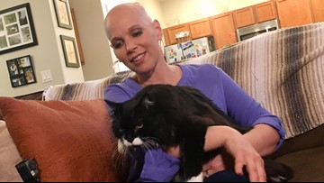 'The cat saved her life': Rescue cat helps Oregon woman detect breast cancer