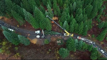 Oregon noble fir cut down for US Capitol Christmas tree