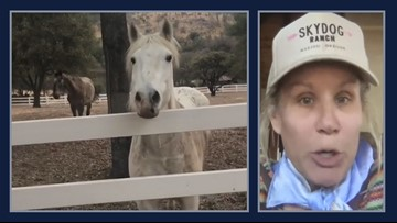 Oregon rancher saves horses from California wildfire