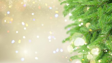 Here's where to recycle your Christmas tree