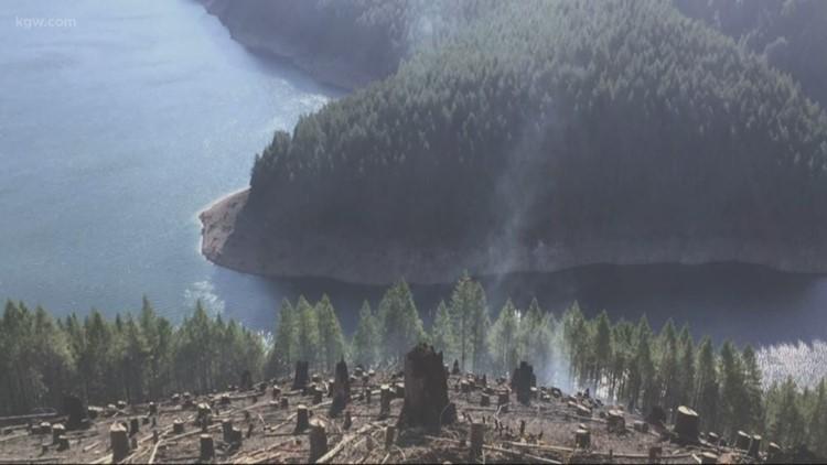 Oregon wildfires burn on forest land
