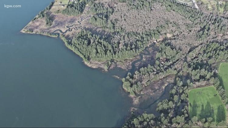Grant's Getaways: Kilchis Point Reserve trails on the Oregon Coast
