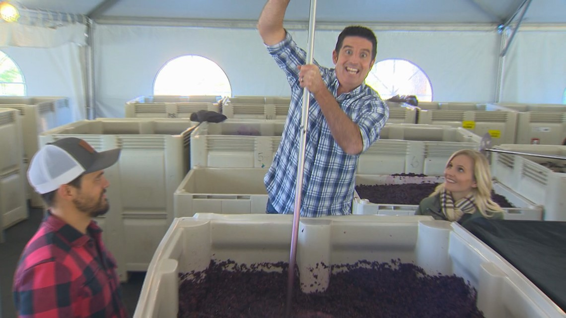 Out and About: Harvest season wrapping up at Willamette Valley Vineyards