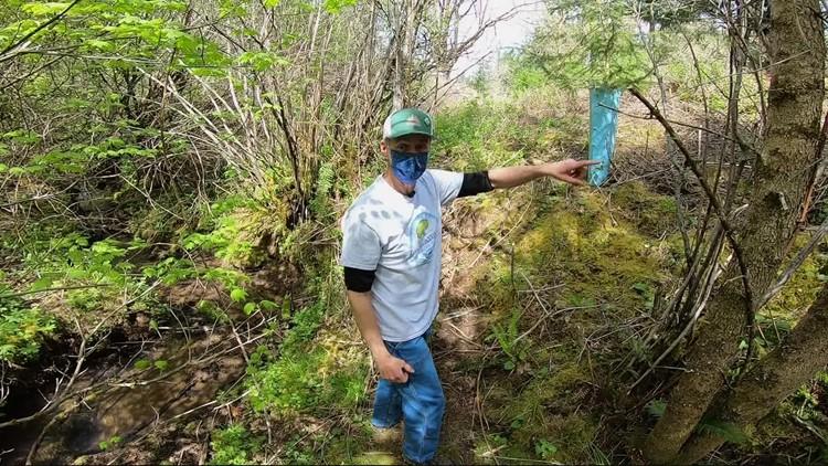 Creating a better habitat