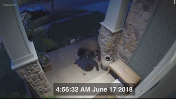 Porch pirates beware, Gresham Police are planting 'bait packages'