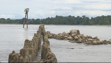 New maps chart possible course for estuary restoration