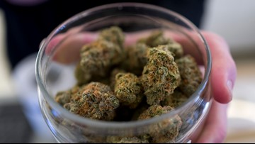 Oregon, awash in marijuana, takes steps to curb production