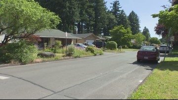 Gresham police warn about 2 child luring cases