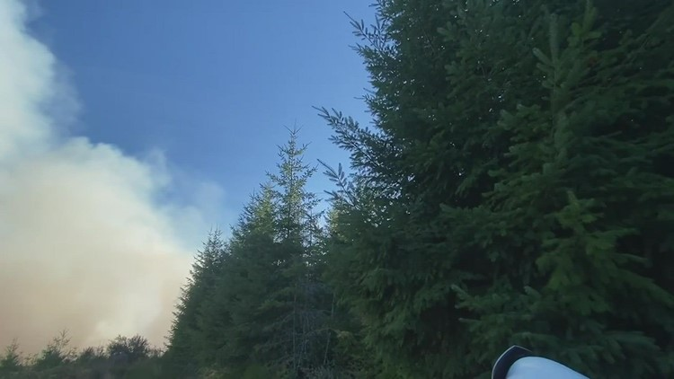 Fire burns 30+ acres outside Scappoose